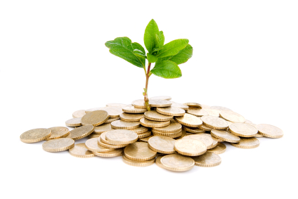 plant growing from pile of coins.jpg